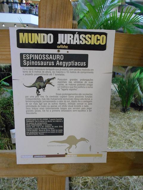 DSCN2740 - Spinosaurus aegyptiacus, Theropoda