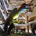DSCN2741 - Spinosaurus aegyptiacus, Theropoda