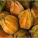 Gifts of the summer:  Physalis
