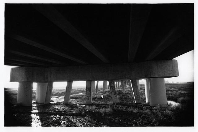 Bridge over Sonoma Creek