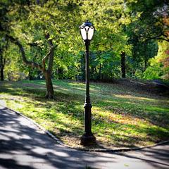 Centra park