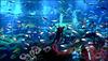 Il grande acquario di Dubai -