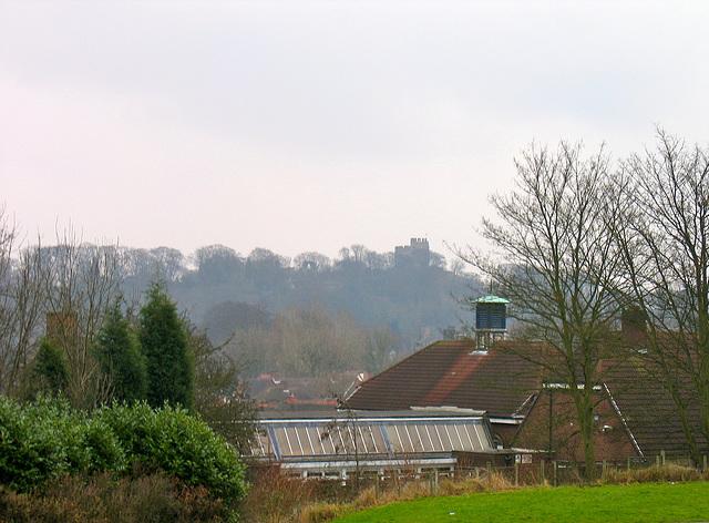 Looking towards Dudley Castle from green space near Cedar Road