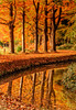 Autumn reflected