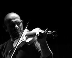 magico violino