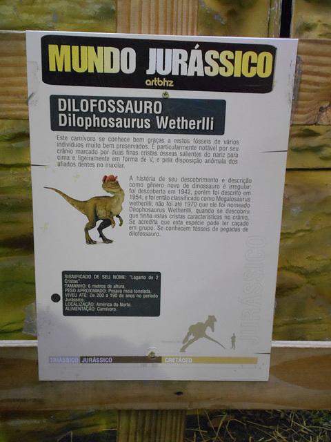 DSCN2751 - Dilophosaurus wetherlli, Theropoda
