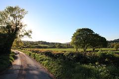 Plains Lane, Blackbrook, Belper, Derbyshire