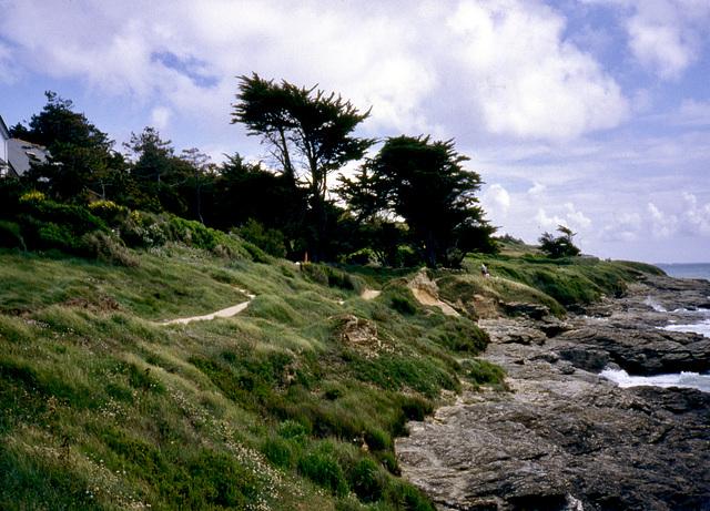 Küstenabschnitt in Südfrankreich