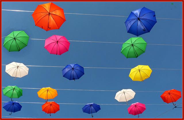 Genova : Un cielo di ombrelli colorati - (935)