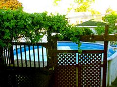 Vive la saison estivale !