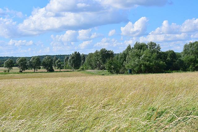 Landschaft bei Neubrandenburg