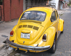 VW jaune / Yellow wonder