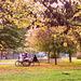 Una pausa nel Parco per due chiacchiere