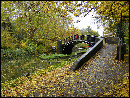 autumn towpath at Isis Bridge