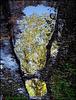 L'empreinte / The footprint