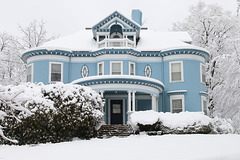 Stately in the snow