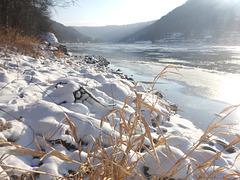 Wintermorgen im Elbtal - 11-1-2017 - vintra mateno en Elbvalo