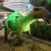 DSCN2768 - Maiasaura peeblesorum, Hadrosauridae Ornithopoda