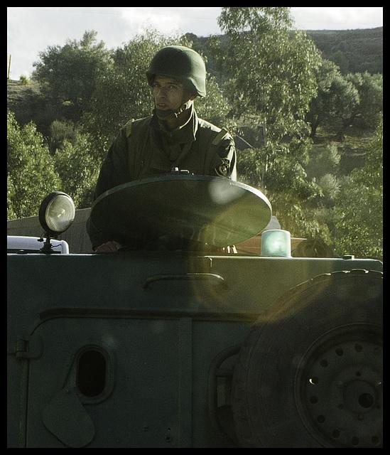 Algerian escort