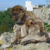 Gibraltar, mother and child