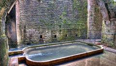 DOLE: Visite de la fontaine aux lépreux. 07