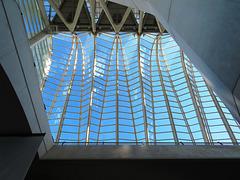 Valencia: Museo de las Ciencias Príncipe Felipe, 4