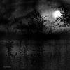 the moon belongs to everyone