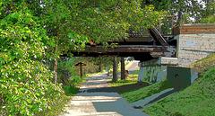 Walking Trail in Quesnel.