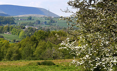Pendle Hill.