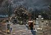 Première neige au cimetière