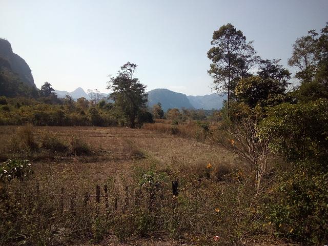 Paysage laotien sans aucun touriste autour sauf......
