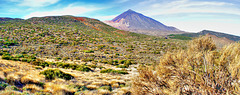 The Teide behind an inimitable nature... ©UdoSm