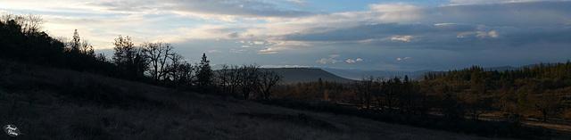 sunrise-tree-silhouettes-pano-01.15.19