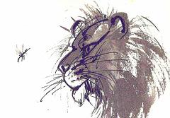 Kulo kaj leono