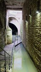DOLE: Visite de la fontaine aux lépreux. 13