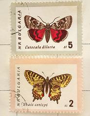 SHC44 Butterflies Bulgaria