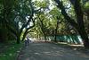 Argentina - Salta, San Lorenzo