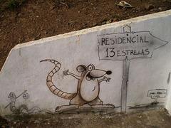 Street art or rural art?