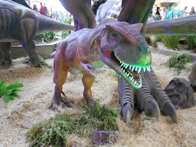 DSCN2787 - Tyrannosaurus rex, Theropoda
