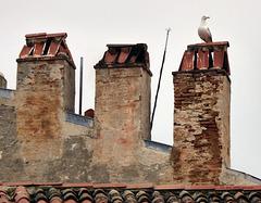 Der Wächter der Drei Türme