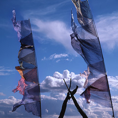 Prayer flags and wooden bird, Whitby, 2006