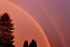 Farbenspektakel am Himmel