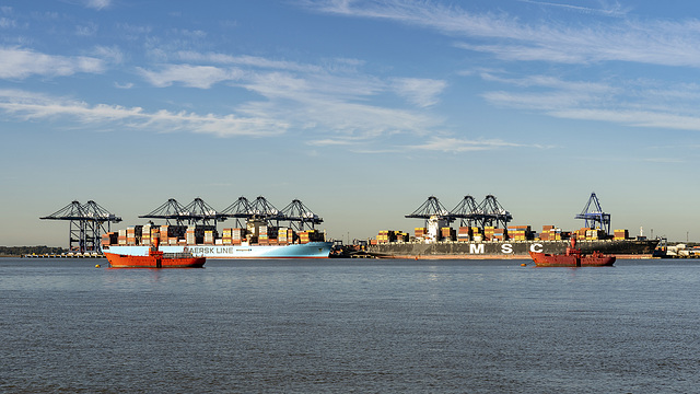 red lightships for big container ships