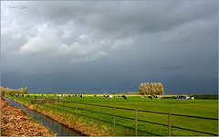 Typical Weather in the Netherlands for this time of the Year...