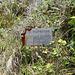 DSCN1965 - Pedra Preta do Norte