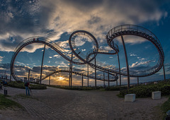 Tiger and Turtle (270°)