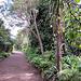 In Hamilton Gardens.