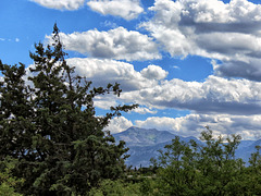 Carr Peak - Huachuca Mountains
