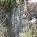 DSCN1970 - Pedra Preta do Norte gravura