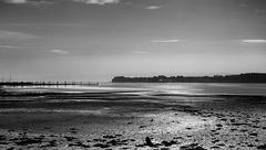 Gareloch at Low Tide